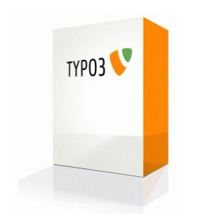 Typo3 gebruikersgroep migusti taal bloggen